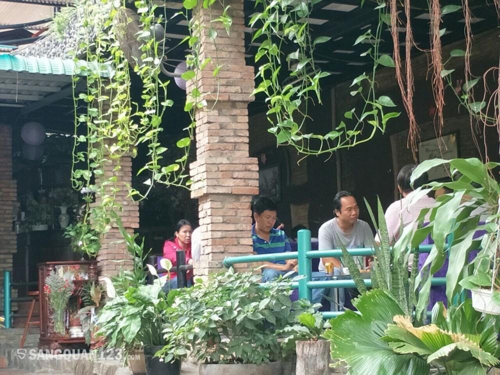 Cần sang quán cà phê sân vườn, máy lạnh, sân thượng quận 12